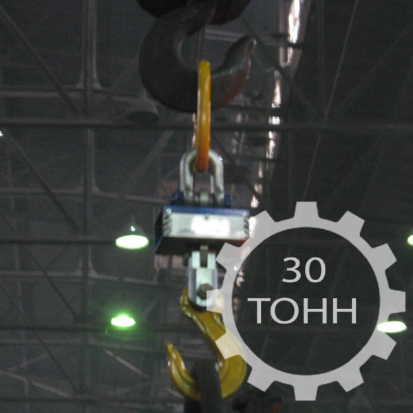 Электронные крановые весы ВКР-30Т с радиоканалом и термозащитой грузоподъемностью 30 тонн